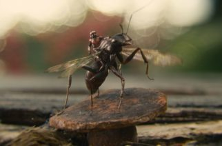 Ant-Man And The Wasp: Bite-sized Fun